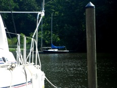 sailboat on mill creek