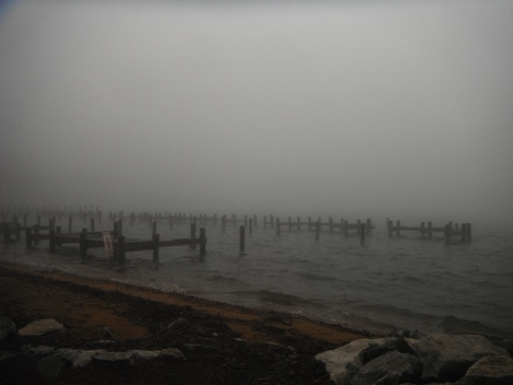 Foggy Severn River, out toward the Chesapeake Bay