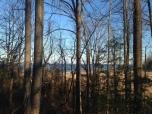 bay overlook at American Chestnut Land Trust