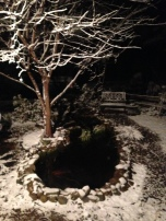 snowy night pond