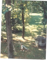 woods, swing set near house on the hill