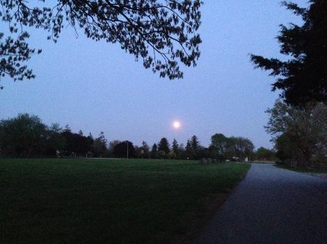 full pink moon - Greenbury Point - Annapolis, Maryland along the Chesapeake Bay